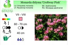Monarda didyma Croftway Pink