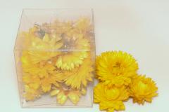 salmenes-dzeltenas2